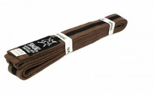 YAMASAKI COLOURED MARTIAL ARTS BELTS (BROWN WITH BLACK STRIPE)
