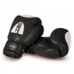 "Boxing Gloves ""HAMED"" WITH TARGET"