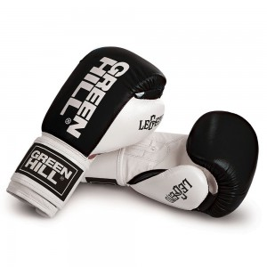 "Boxing Gloves ""LEGEND"""